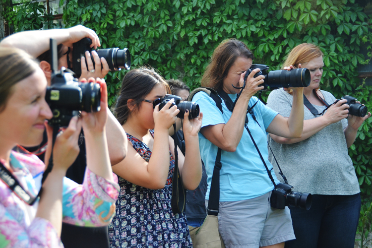 Photography 101 Classes in Madison, AL
